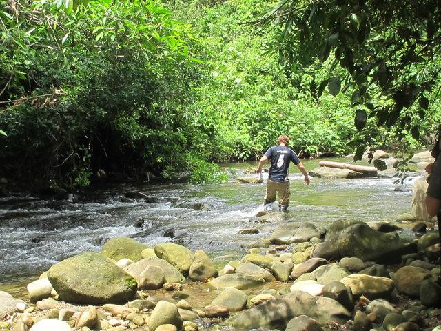Jason retraverse le rio pour aller reporter le macero là où il a été capturé